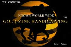 go to GOLD MINE HANDICAPPING